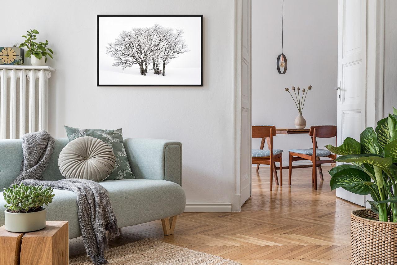Photo murale d'un arbre enneigé dans un appartement en ville